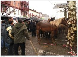 foire-aux-chevaux